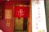 心斎橋のホステル内にねこ浴場&ねこ旅籠、新コンセプトの保護猫カフェ誕生